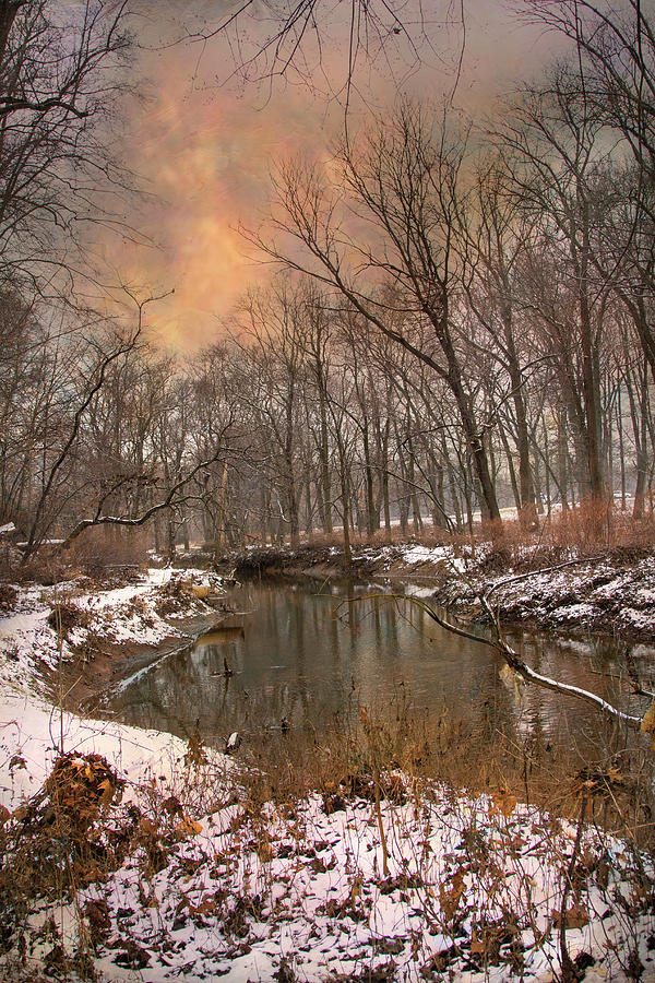 Winter Morning by John Rivera