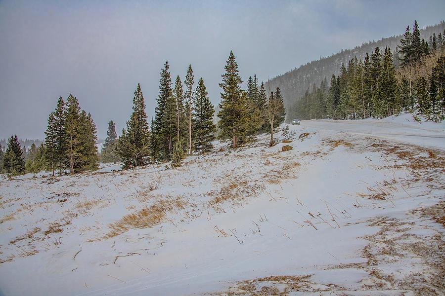Winter Mountain Drive, Rocky Mountain National Park by Marcy Wielfaert