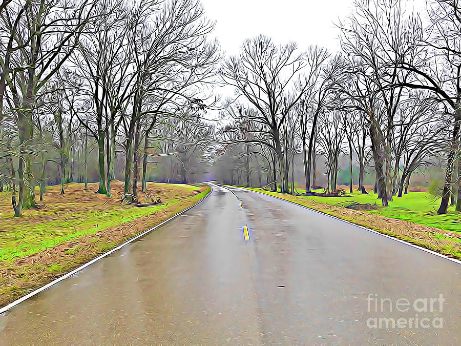 Winter on Natchez Trace Parkway by Tracy Ruckman