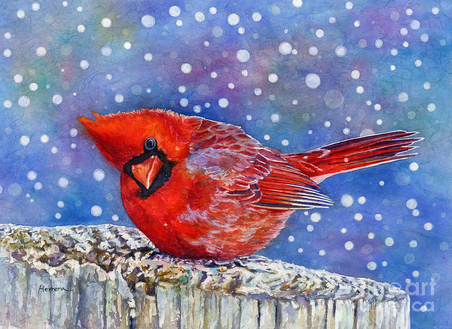 Red Cardinal Painting - Winter Quietude by Hailey E Herrera
