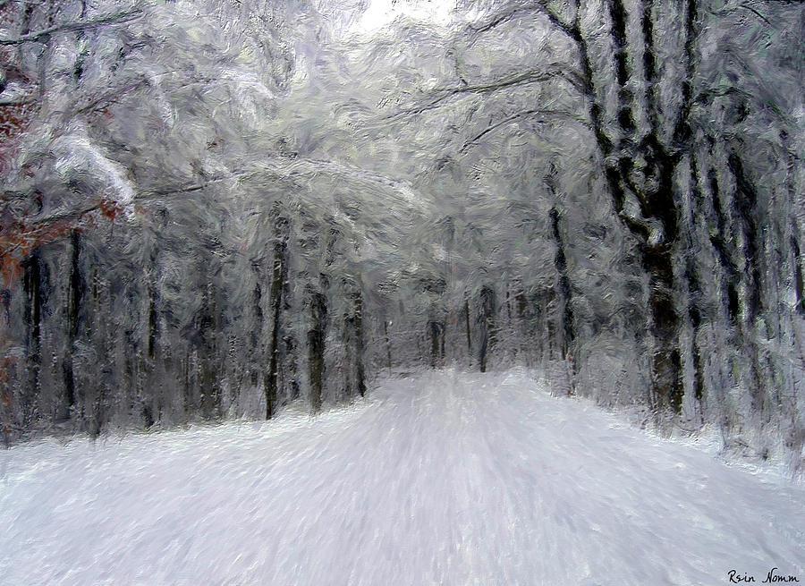 Winter Road by Rein Nomm