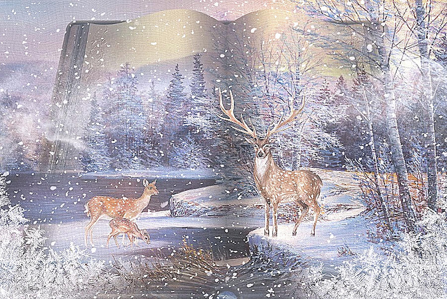WINTER STORIES 002 by G Berry
