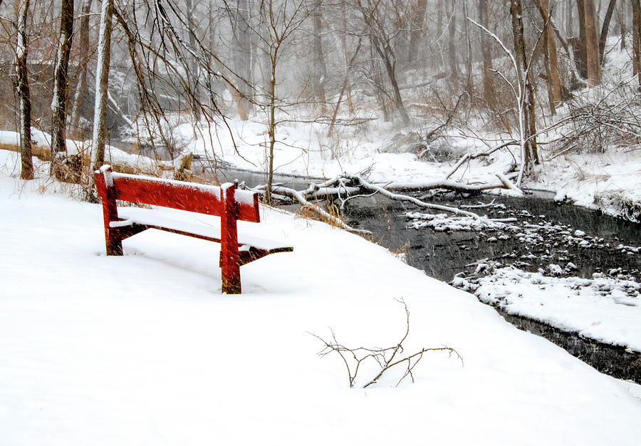 Bench Photograph - Winter Storm by Carl Simmerman