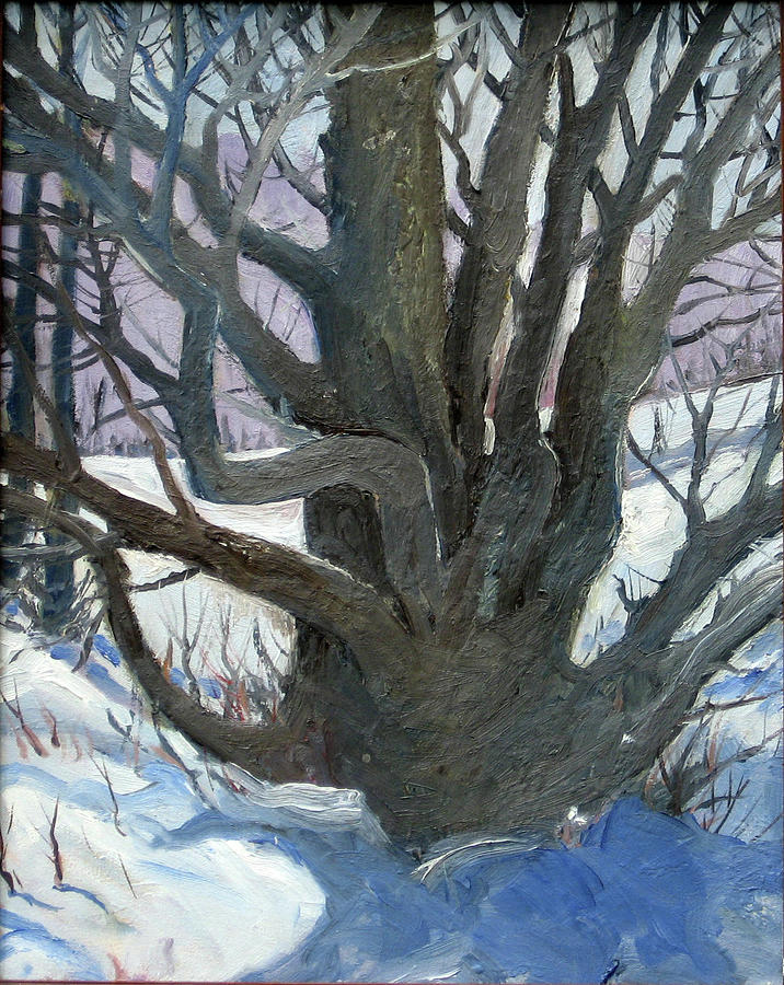 Winter Trees 3 - White Willow - Original Oil 16x20 Painting by Doug Jerving