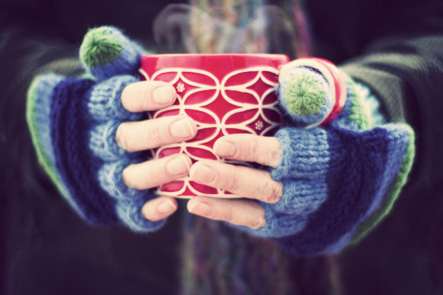 Winter warmer Photograph by Catherine MacBride