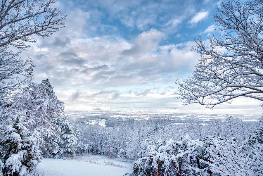 Winter Wonderland by Lara Ellis
