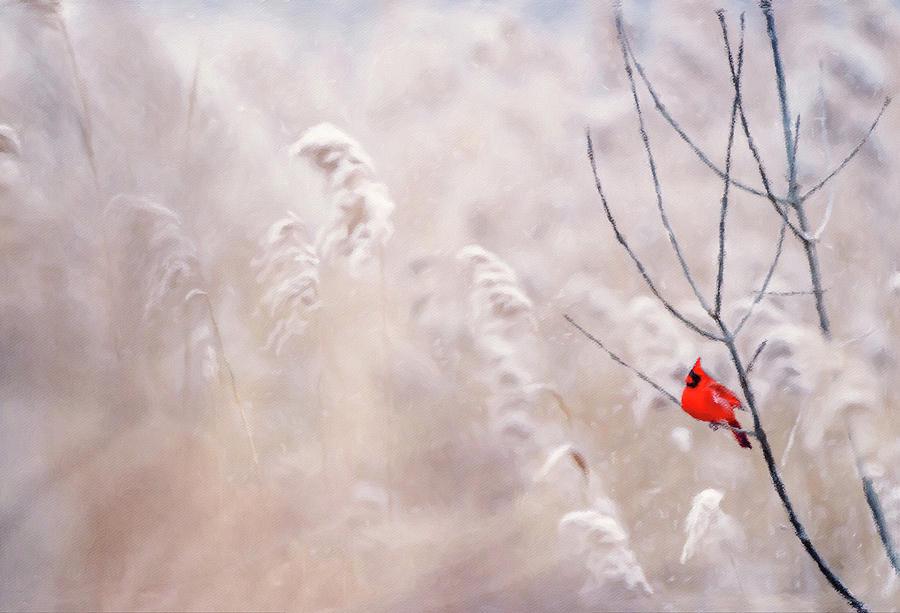 Winter's Keep by Susan Maxwell Schmidt