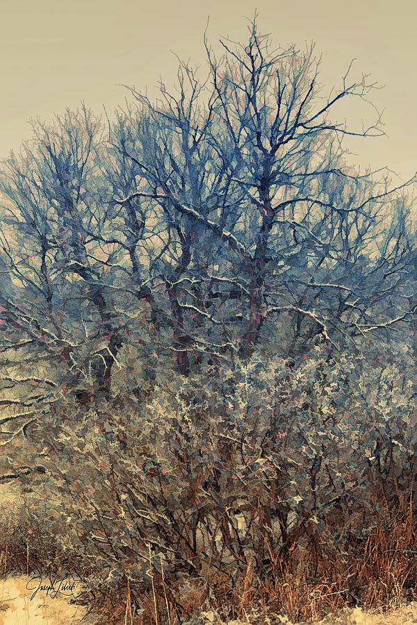 Garden Of The Gods Digital Art - Winter_Tree_Bouquet_202103 by Joseph Liberti