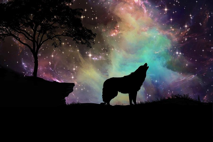 https://images.fineartamerica.com/images/artworkimages/mediumlarge/3/wolf-silhouette-against-starry-sky-brandy-barker.jpg