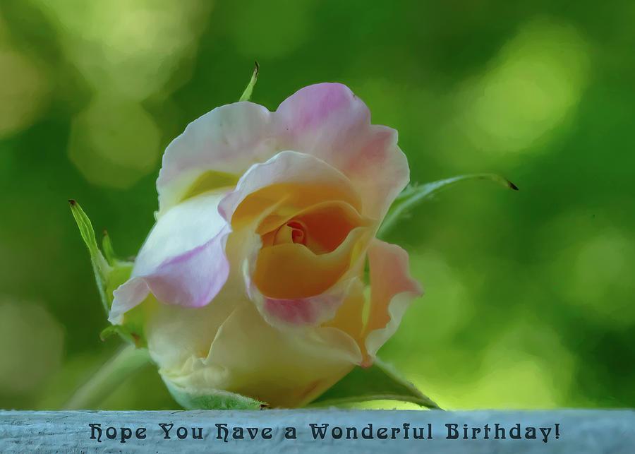 Wonderful Birthday Photograph
