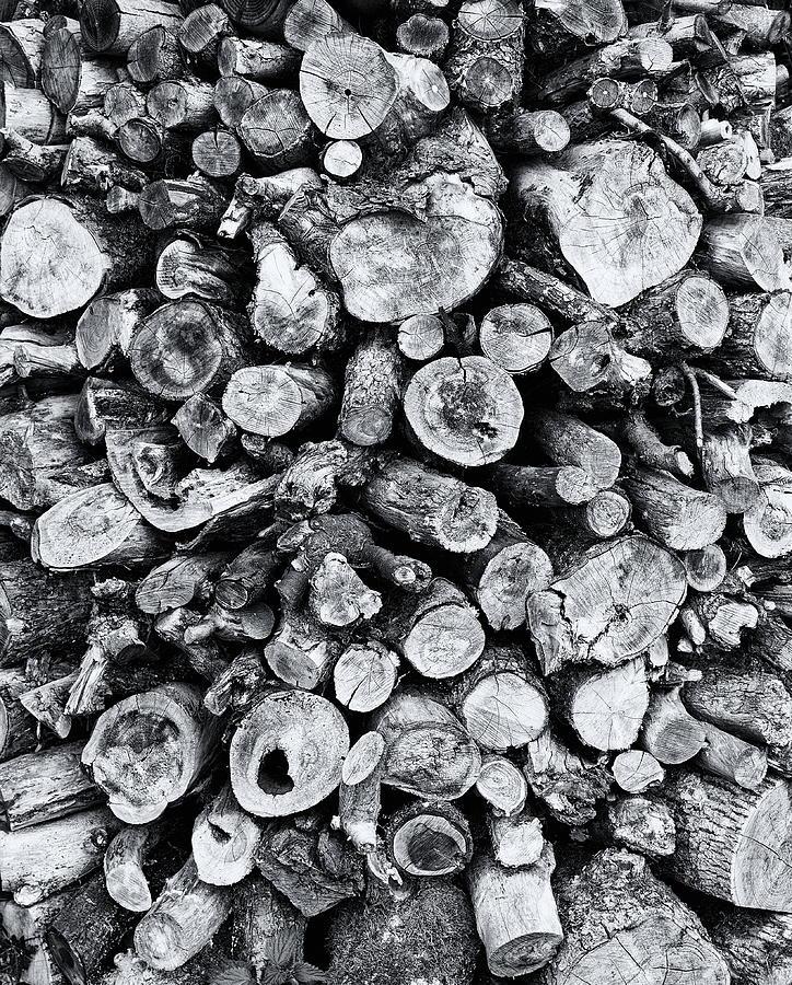 Wood Stockpile Monochrome Photograph