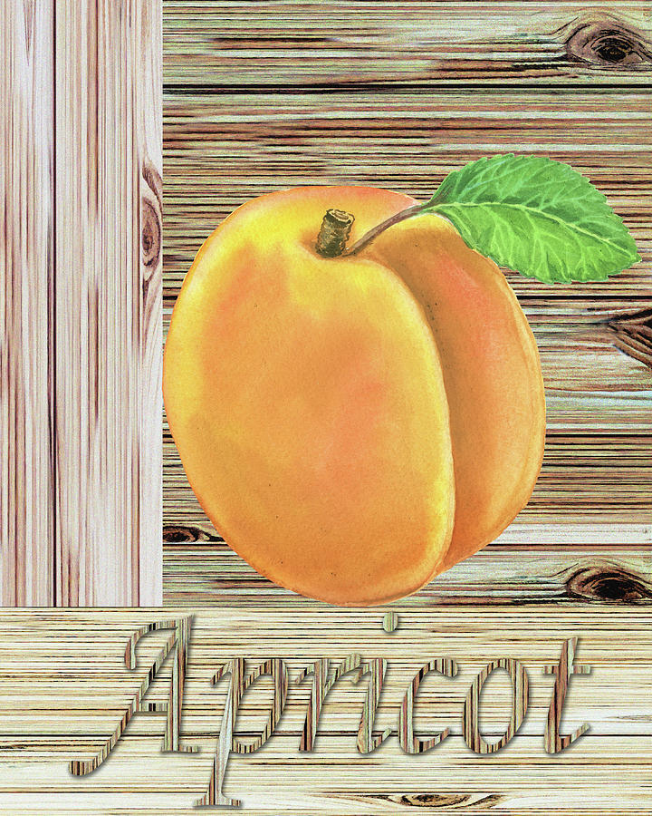 Wooden Crate With Organic Apricot Farmers Market Watercolor Painting