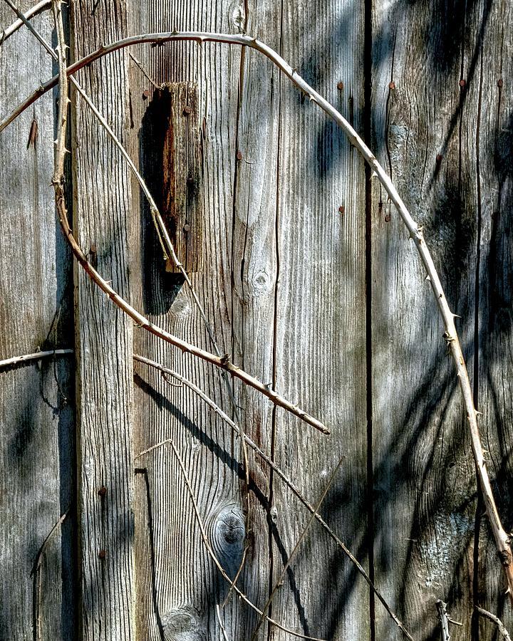 Wooden Door Latch 2 Photograph