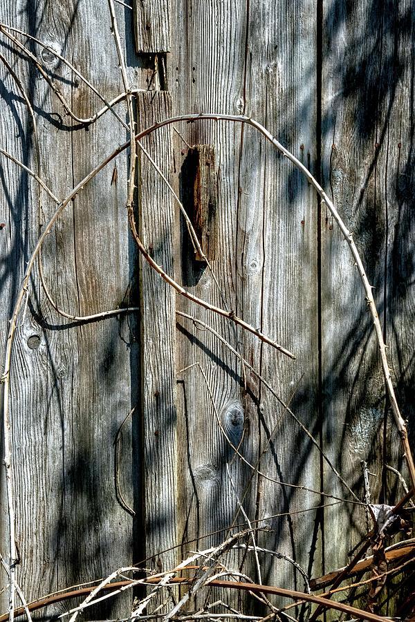 Wooden Door Latch Photograph