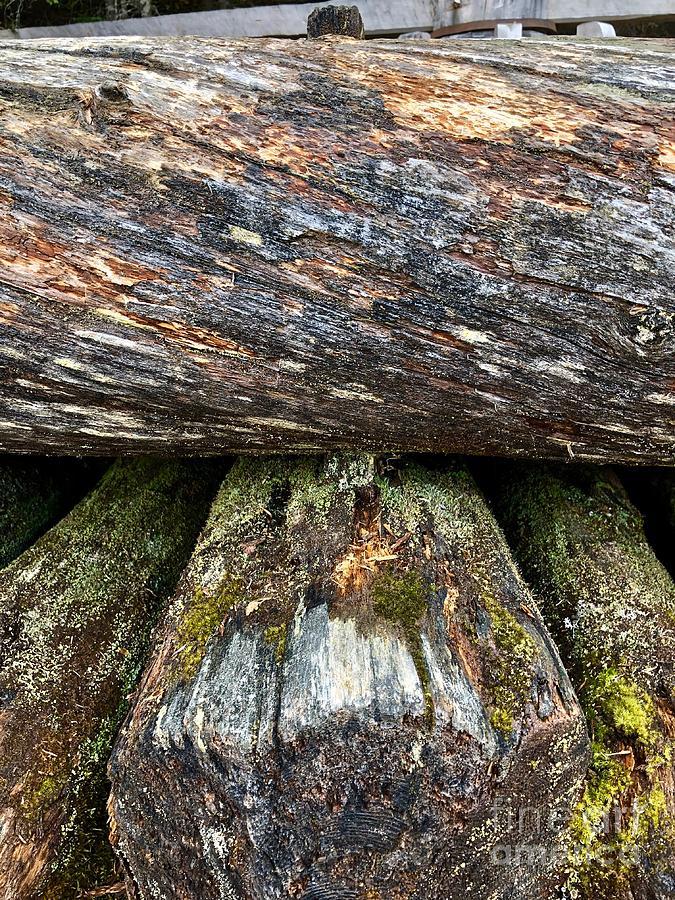 Wooden Pegs by Ann E Robson