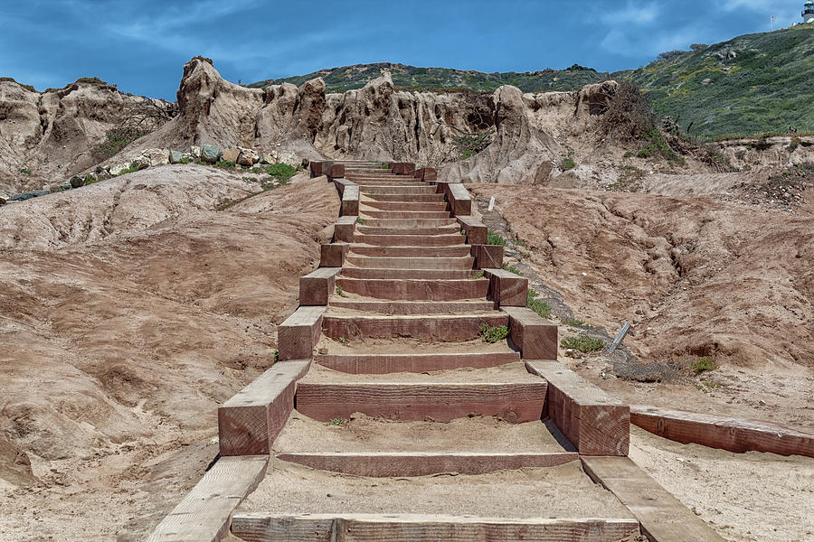 Wooden Steps by Alison Frank