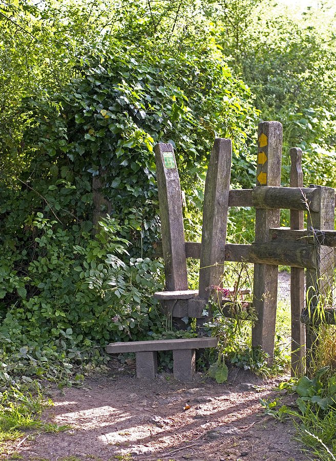 Wooden stile in countryside Photograph by Lyn Holly Coorg