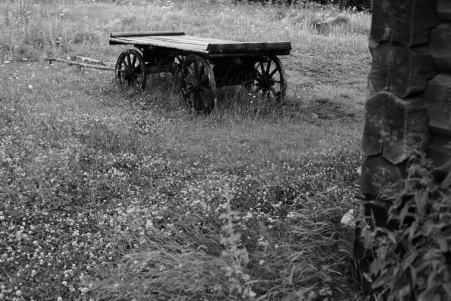 Wooden wagon in rural field Photograph by Vladimir Serov