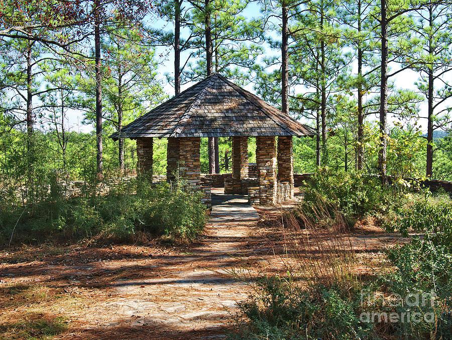 Woodland Retreat Photograph