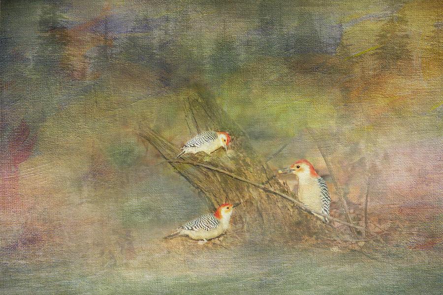 Woodpecker Trio by Patti Deters