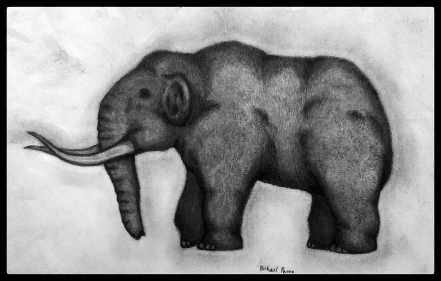 Woolly Mammoth W/ Border Drawing