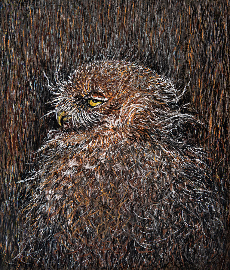 Pastel Pastel - Mimicry of a burrowing owl by Varvara Medvedeva