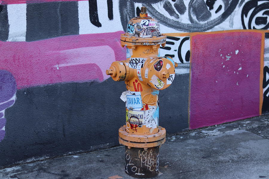 Wynwood Fire Hydrant by Blair Damson