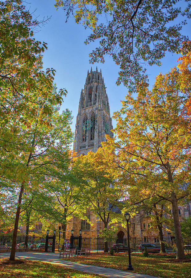 Yale University Harkness Tower by Juergen Roth