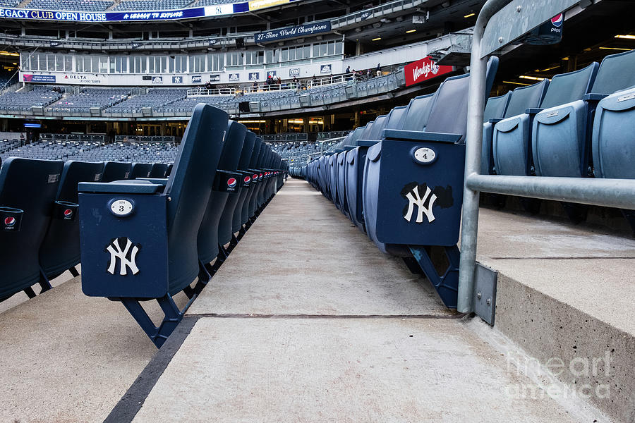 Yankee Seating by Len Tauro