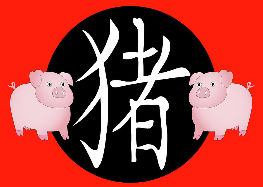 Year of the Pig by Karen Foley