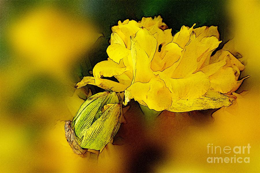 Yellow Daffodils 7 Digital Art