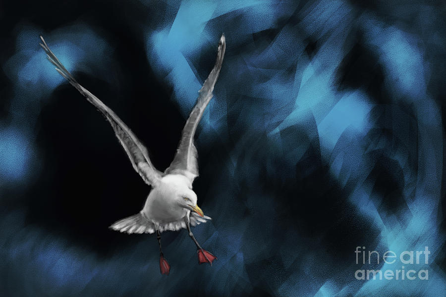Yellow-legged Gull Painting Digital Art