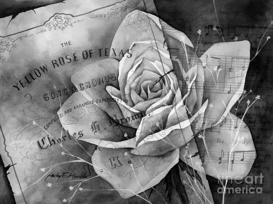 Yellow Rose Of Texas In Black And White Painting
