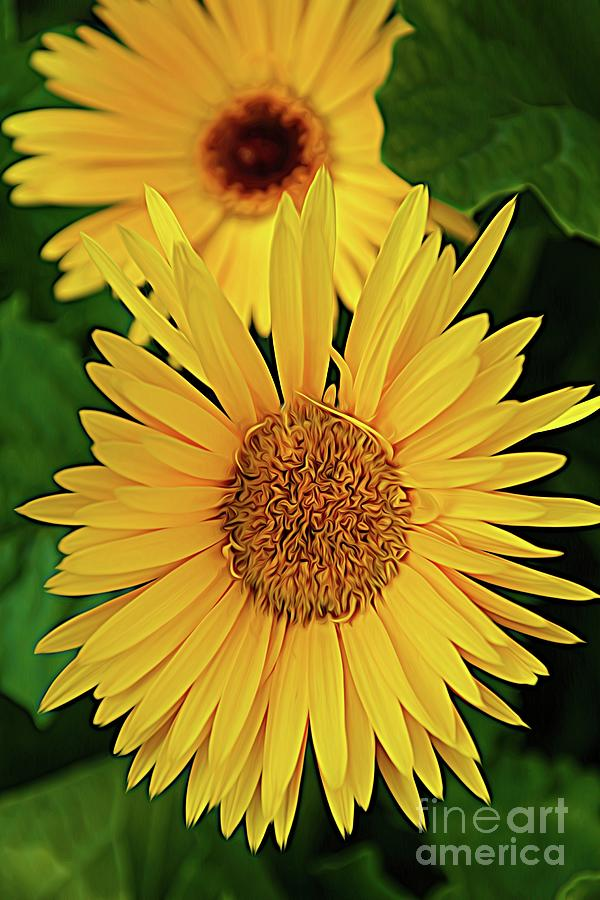Yellow Digital Art - Yellow Sunflowers - Expressionism by Chris Mautz