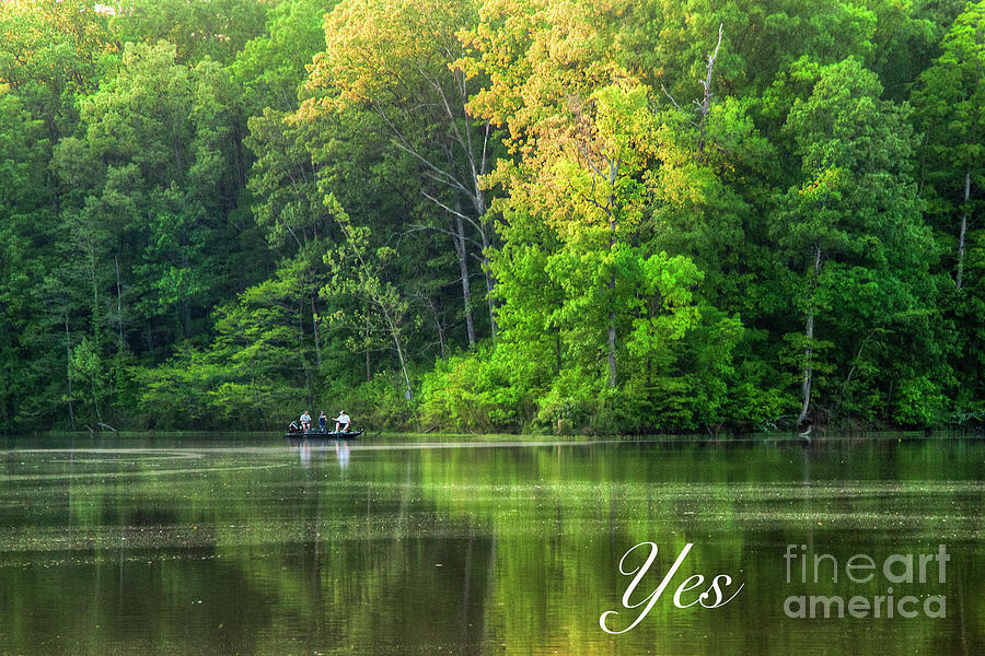 2011 Photograph - Yes  by Larry Braun