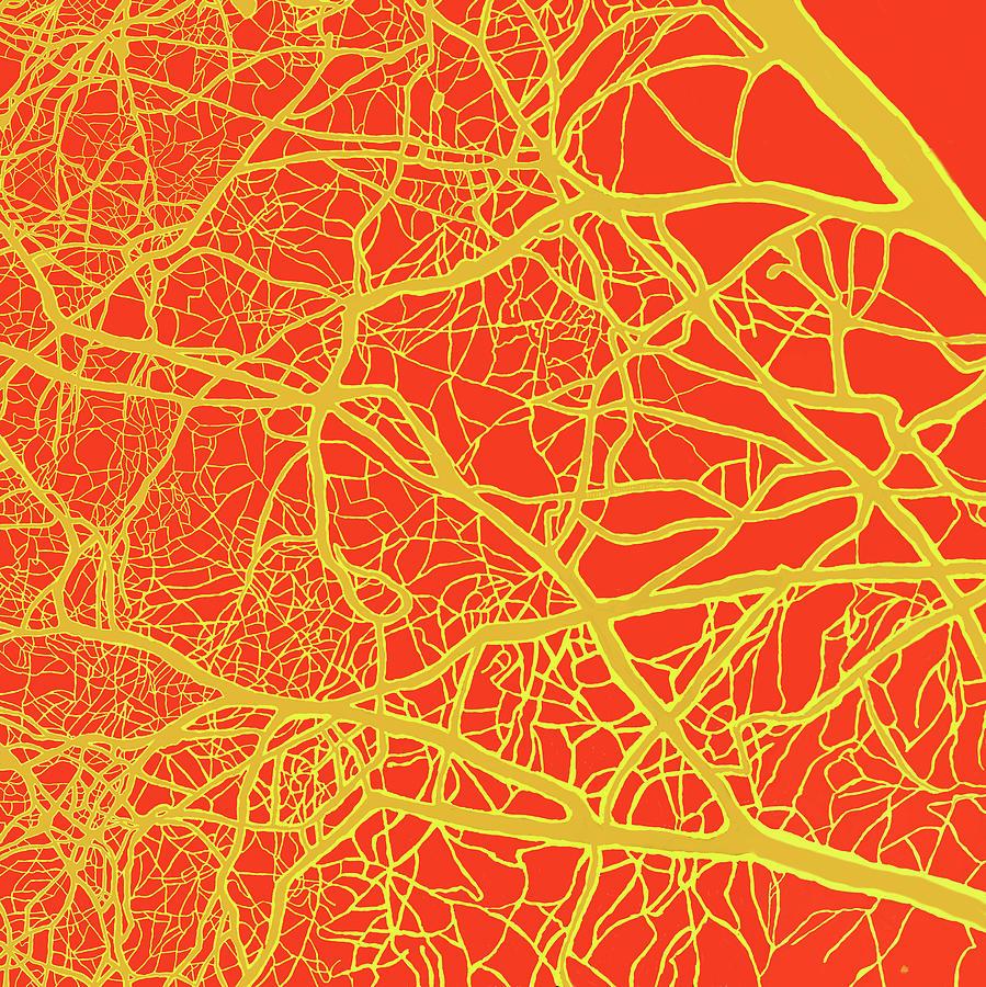 Yggdrasil The World Tree As An Abstract. Digital Art