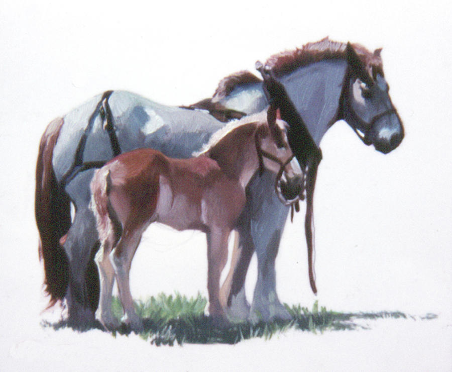 Horses Painting - Youngin by Betty Jean Billups