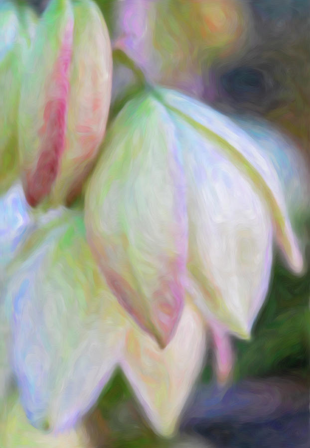 Yucca Cactus Flowers with Absrtact Background by Barbara Rogers