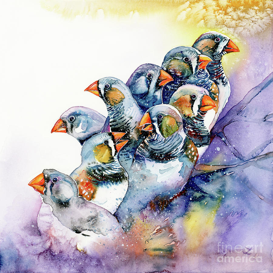 Zebra Finches Painting