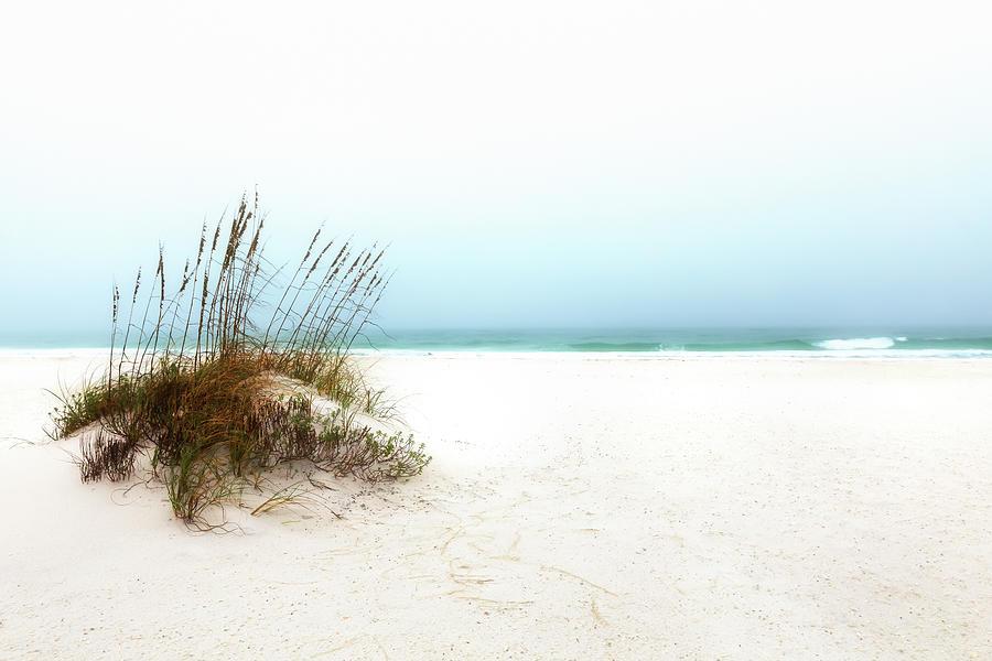 Zen Beach by Susan Rissi Tregoning
