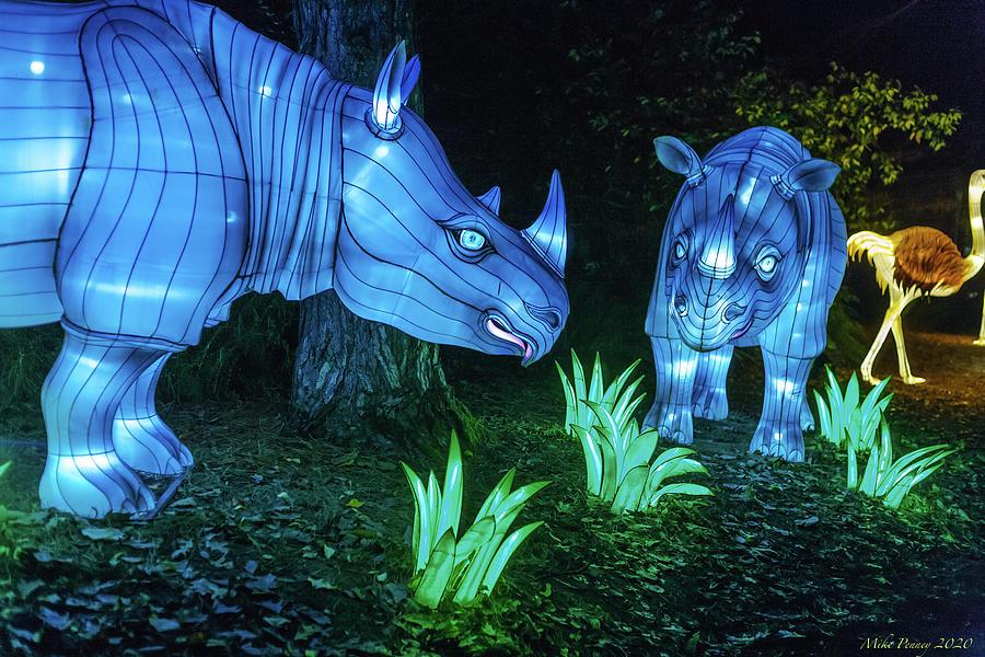 Zoo Lights Seattle 39 Photograph