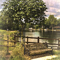A Seat By The Thames by Ian Lewis