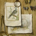 A Trompe L'oeil With Magnifying Glass by Celestial Images