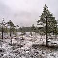 April Snow 1 by Jouko Lehto
