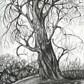 Autumn Dancing Tree by Anna  Duyunova