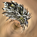 Cottongrass by Jouko Lehto
