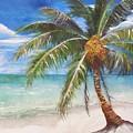 Dessert Palm by Sibby S