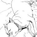 Dog Breed by Tamara Zemlyanaya