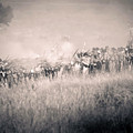 Gettysburg Confederate Infantry 9112s by Cynthia Staley