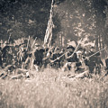 Gettysburg Union Infantry 9348s by Cynthia Staley